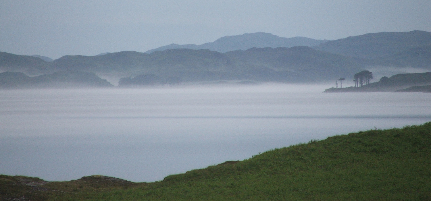 misty loch and pine trees